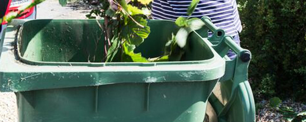 Is it time to renew your garden waste subscription?