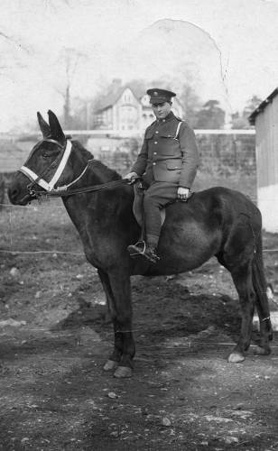 William Peters on a mule